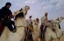 مهرجان الخيام بحزوة دورة 2014