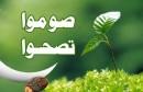 soumoutasohou-2_14062015074923