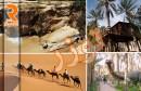 توزر السياحة