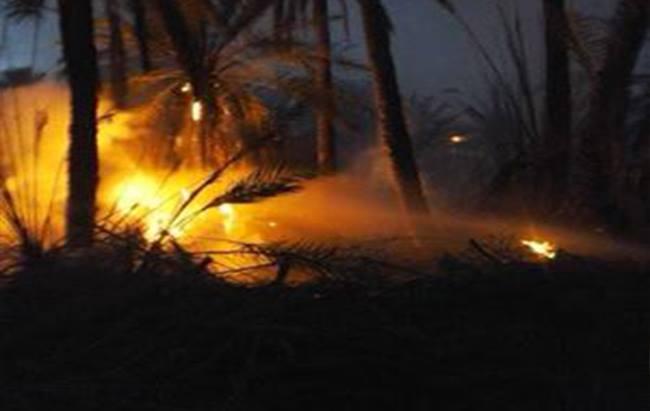 السيطرة على حريق إندلع بالواحة القديمة بحامة الجريد بتوزر11-01-2017_2
