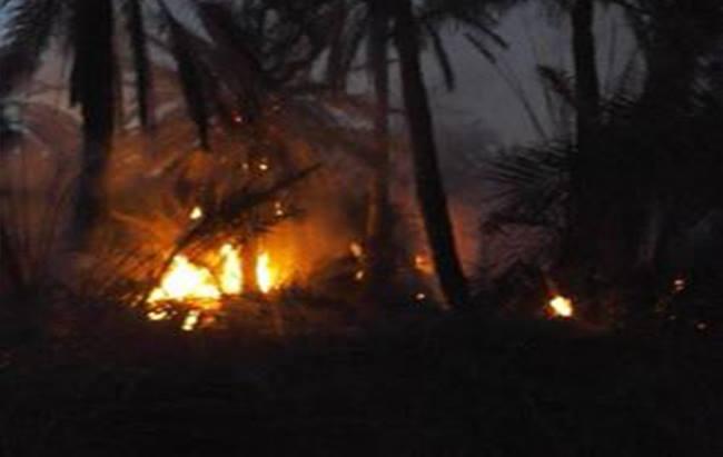 السيطرة على حريق إندلع بالواحة القديمة بحامة الجريد بتوزر11-01-2017_3