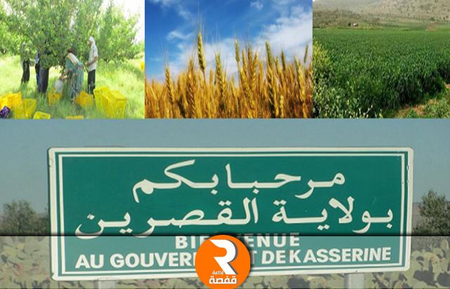 القطاع الفلاحي بولاية القصرين
