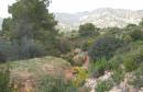 جبل-المغيلة
