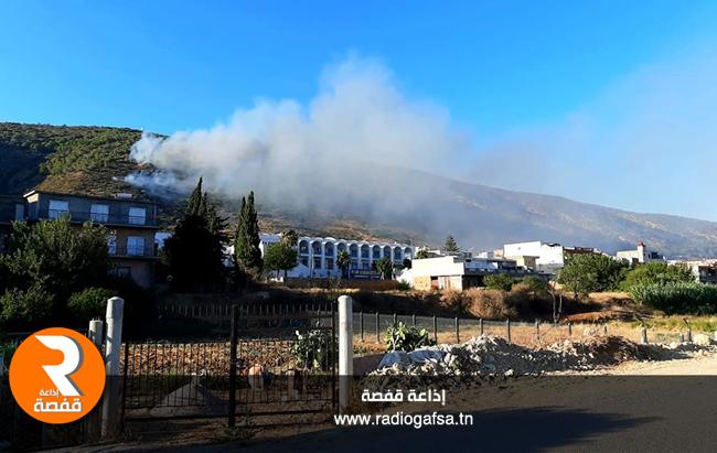 حريق جبل الناظور بغار الملح45455686866
